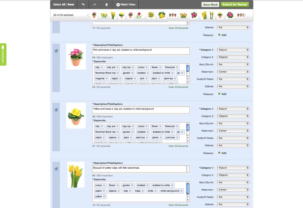 Shutterstock mass editing interface
